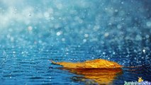 1x Band-Tih deževen dan