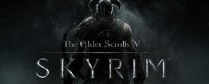 The Elder Scrolls V: Skyrim - Bug gigante
