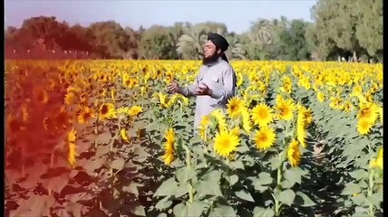 Sheher E Madina Full Video Naat [2016] Faisal Raza Qadri