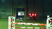 CSO Ghlin - 17/11/13 - 110cm - 1 barre & 2 refus