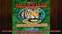 READ book  The 12 Tiger Steps Out of Nicotine Addiction A Step Study Guide for Nicotine Addiction Full EBook