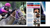 Preakness 2016: Tragedy strikes at rain soaked Preakness as two horses die ahead of the big race