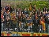 Castel di Sangro-LECCE 1-0 - 24/09/1995 - Campionato Serie C1/Gir. B 1995/'96 - 5.a giorn. di andata