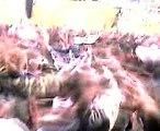 allez bordeaux chelsea ultramarines virage sud le 26/11/2008