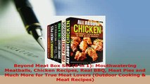 Download  Beyond Meat Box Set 6 in 1 Mouthwatering Meatballs Chicken Recipes Real BBQ Meat Pies Read Online