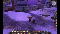 World Of Warcraft: Paladin hits Level 55 - Wrath of the Lich King