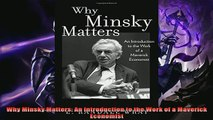 One of the best  Why Minsky Matters An Introduction to the Work of a Maverick Economist