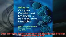 DOWNLOAD FREE Ebooks  Atlas of Oocytes Zygotes and Embryos in Reproductive Medicine Hardback with CDROM Full Free