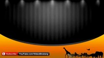 Most Amazing of Eagles - Eagles VS Attacks Dog- Bear-Fox and Human Rabbit- Deer- Goat-HD