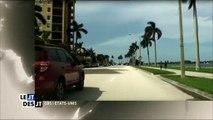 La plage de Palm Beach envahit de requins