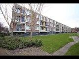 Koekangestraat 17 te Den Haag, Borgdorff Makelaars