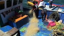 Au Chili, des filets de pêche transformés en skateboards