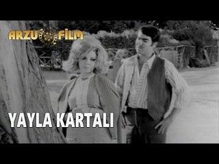 Yayla Kartalı | Yıldız Tezcan & Nuri Sesigüzel & Münir Özkul - Siyah Beyaz Filmler