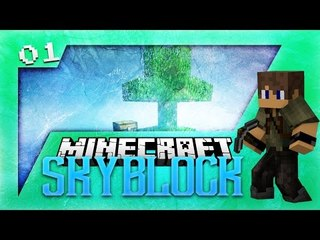 Minecraft Skyblock:  Life IN The Sky Ep1