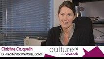 Christine Cauquelin, Ex - Head of documentaries, Canal+, Creative jobs