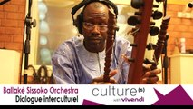 Ballaké Sissoko Orchestra, Dialogue interculturel