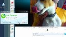 Cómo grabar llamadas y vídeos de Skype