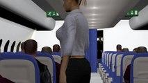 Le crash de l'avion Egyptair