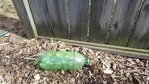 Piège à souris avec une bouteille en plastique  ᴴᴰ