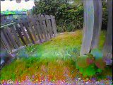 Blade Inductrix 200 FPV promenade dans le jardin
