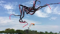 Giant octopus kite flying at Marina Barrage - omg video