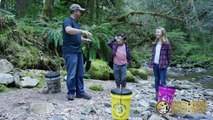 Where To Use A Gold Rush Nugget Bucket For Prospecting