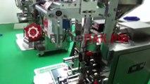 Оборудование для фасовки и упаковки специй в плоский пакет DXDF-60C