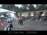 Charlotada. Fiesta Rodeo Cómico. TOROGOL. Fiestas Tema. Lienzos charros. Cortijo. Plaza de toros.