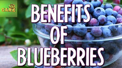 Health Benefits of Blueberries   Care TV