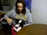 Elle essaie de boire un verre d'eau, mais gardez vos yeux sur le chat... C'est vraiment TROP amusant!!