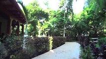 Macaws Ocean Club #10, Jaco Beach, Costa Rica
