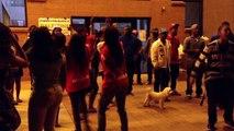 University of Arizona UA 2014-15 Zeta Phi Beta Probate: Open Stroll Pt3