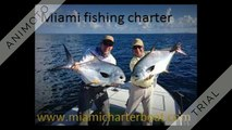 Miami deep sea fishing charter | Miami offshore fishing charter |  Miami private fishing charter