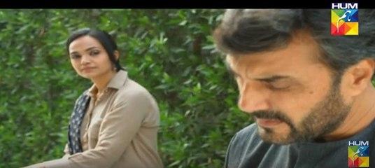 Pakeeza Episode 17 Full HUM TV Drama 2 June 2016