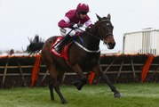 Apple's Jade- Aintree 2016 Betfred Anniversary 4-Y-O Juvenile Hurdle