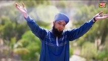 Bilal Qadri - Maula teaser