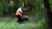 Biggest wild animal fights | CRAZIEST Animals Attack Caught | Crazy animal attack, funny animals #2