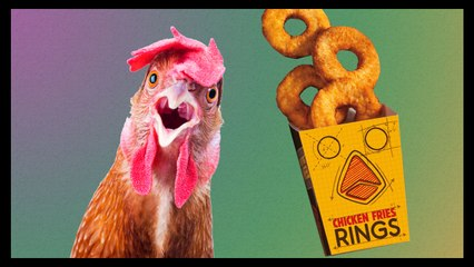 If You Like It Then You Make A Chicken Ring Of It!! - Food Feeder