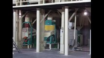 50-100T corn peeling and flour milling line, corn peeling machine, corn flour machine