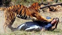 أقوى-مقاطع-هجوم-الحيوانات-المفترسة-على-البش