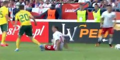 Fight in Match- Poland 0-0 Lithuania - 06-06-2016