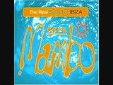 Track #14/17 Saltwater (Thrillseekers Remix) - Buddha bar - The Real Sound of Ibiza - Cafe Mambo