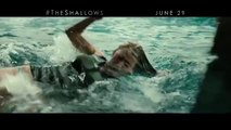 Extended-Spots-SAUSAGE-PARTY-GHOSTBUSTERS-STAR-TREK-BEYOND-THE-SHALLOWS--2016-Summer-Movies