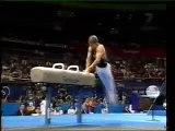 17) Aleksey Nemov - PH (Olympic games 2000 Sydney - AA)