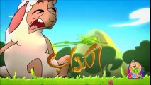 Ra3i kadab Toyor Baby - انشودة الراعي الكذاب شهاب طيور الجنة بيبي
