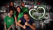 Amores Perros y Otros Amores - Top Nutrition 19 de abril 2015