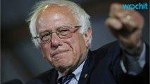 Senate Democrats Give Bernie Sanders Space