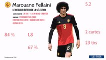 La fiche joueur: Marouane Fellaini