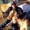 Des chevaux qui se prennent pour des chiens - Compilation d'animaux adorables