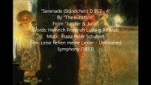 The Function - Serenade (Ständchen) D 957 - 4